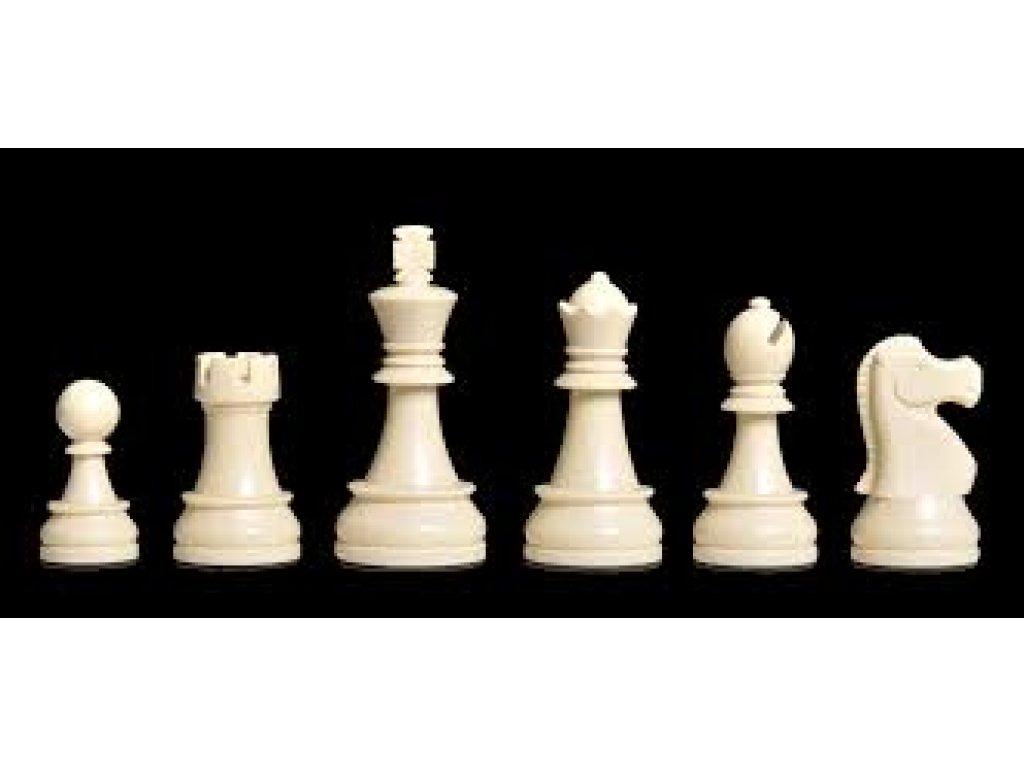 DGT- Staunton Plastové Šachové figurky