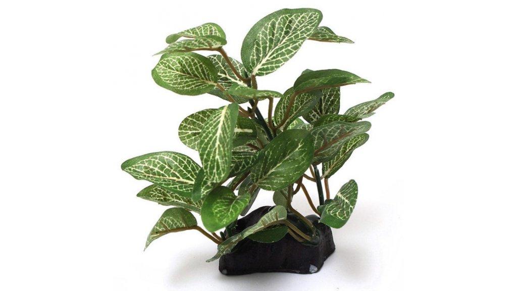 Umělá rostlina - různé typy