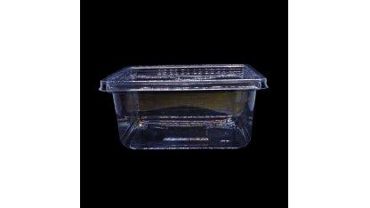 Krabička s víčkem 250 ml